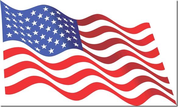 B-15-11-8-inch-waving-usa-flag-american